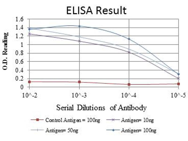 ELISA image for anti-Mitogen-Activated Protein Kinase 3 (MAPK3) antibody (ABIN1108133)