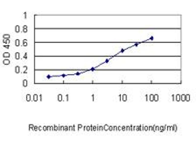 Image no. 3 for anti-Glutamate-Cysteine Ligase, Catalytic Subunit (GCLC) (AA 528-637) antibody (ABIN561050)