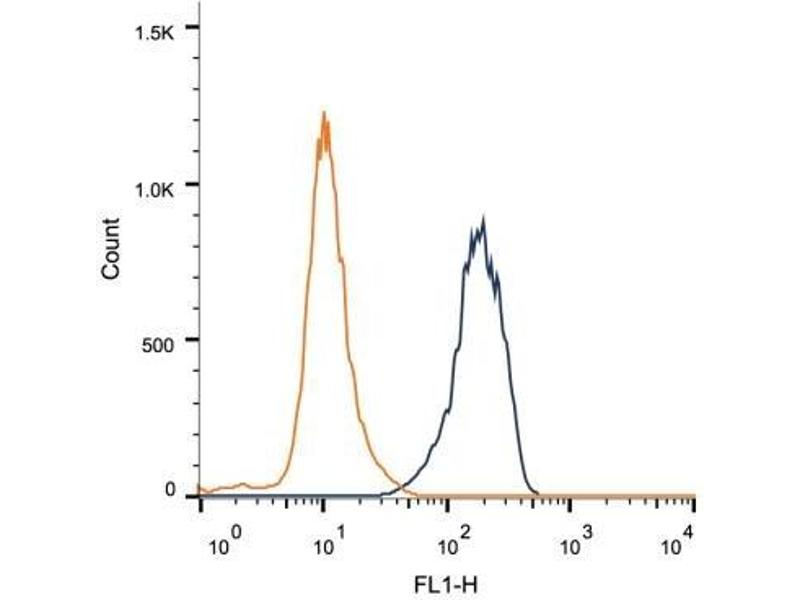 Flow Cytometry (FACS) image for anti-BRCA1 antibody (Breast Cancer 1) (AA 1314-1864) (ABIN253016)