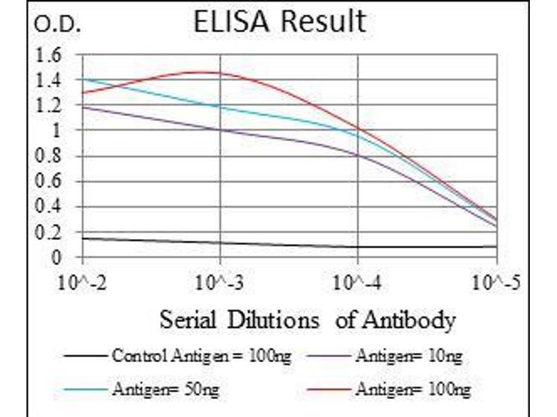 ELISA image for anti-Fas (TNF Receptor Superfamily, Member 6) (FAS) antibody (ABIN969519)
