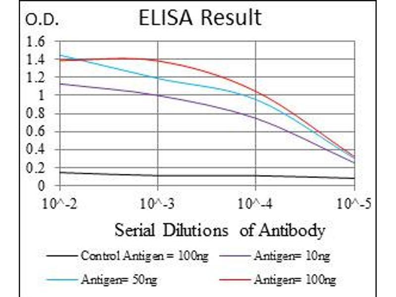 ELISA image for anti-Glucose-6-Phosphate Dehydrogenase (G6PD) antibody (ABIN1107287)