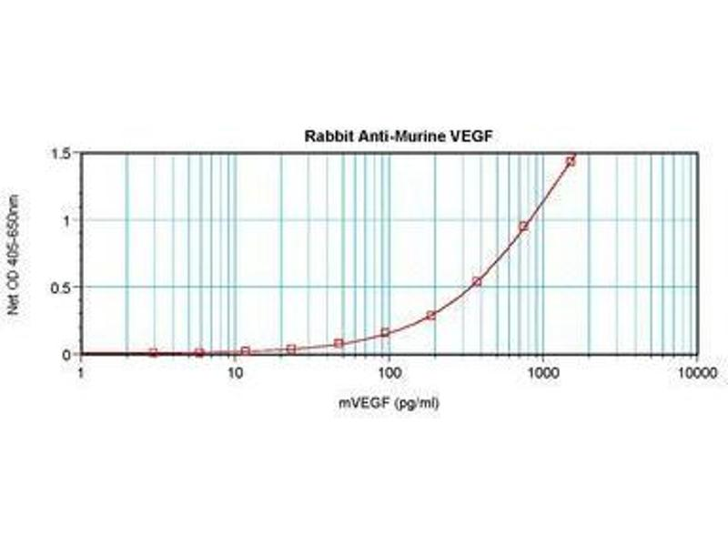 image for anti-VEGF antibody (Vascular Endothelial Growth Factor A) (ABIN465273)