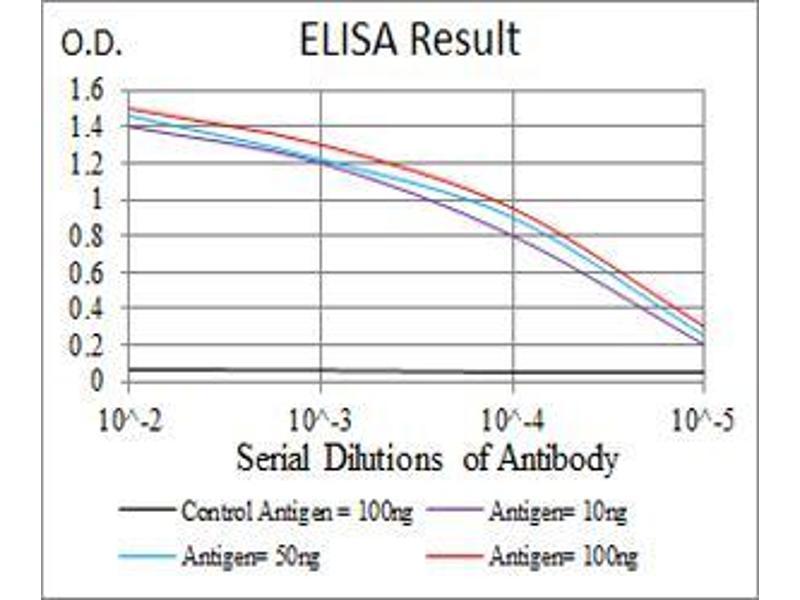 ELISA image for anti-TUBB1 antibody (Tubulin, beta 1) (AA 33-166) (ABIN5542398)