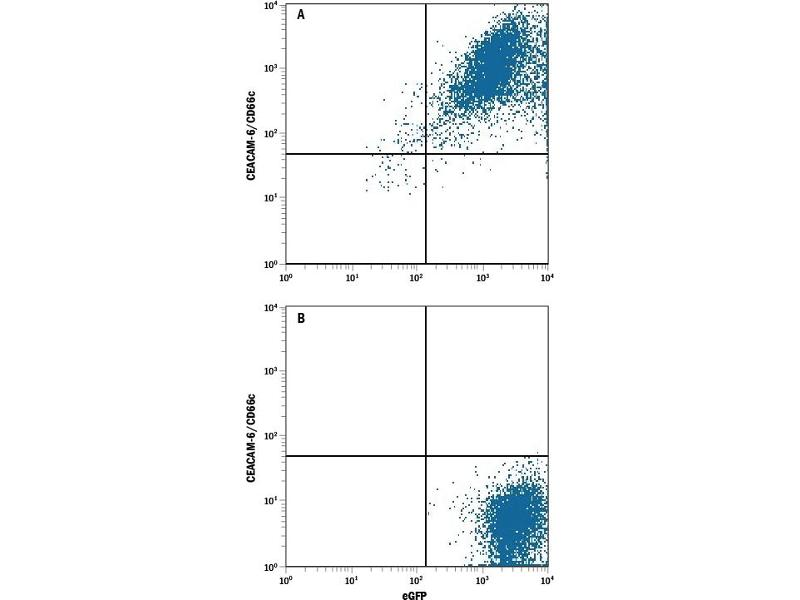 Flow Cytometry (FACS) image for anti-Carcinoembryonic Antigen-Related Cell Adhesion Molecule 6 (Non-Specific Cross Reacting Antigen) (CEACAM6) (AA 35-320) antibody (APC) (ABIN4897481)
