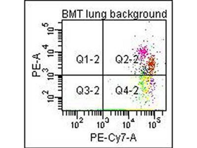 Image no. 1 for anti-Collagen, Type I (COL1) antibody (Biotin) (ABIN5596821)