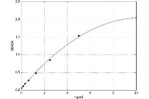 Image no. 1 for Secreted Frizzled-Related Protein 4 (SFRP4) ELISA Kit (ABIN5696709)