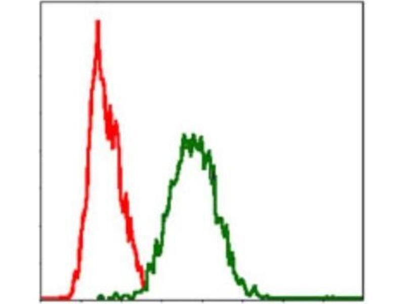 Flow Cytometry (FACS) image for anti-Fas Ligand (TNF Superfamily, Member 6) (FASL) antibody (ABIN4310550)
