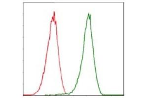 Flow Cytometry (FACS) image for anti-Cyclin-Dependent Kinase 2 (CDK2) antibody (ABIN4297025)