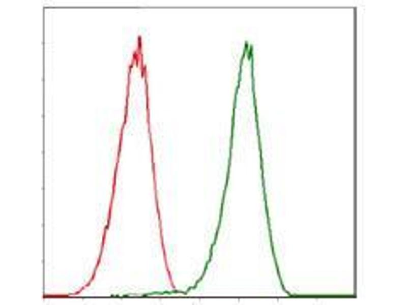 Flow Cytometry (FACS) image for anti-Cyclin-Dependent Kinase 2 (CDK2) antibody (ABIN969506)