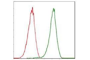 Flow Cytometry (FACS) image for anti-CDK2 antibody (Cyclin-Dependent Kinase 2) (ABIN969506)
