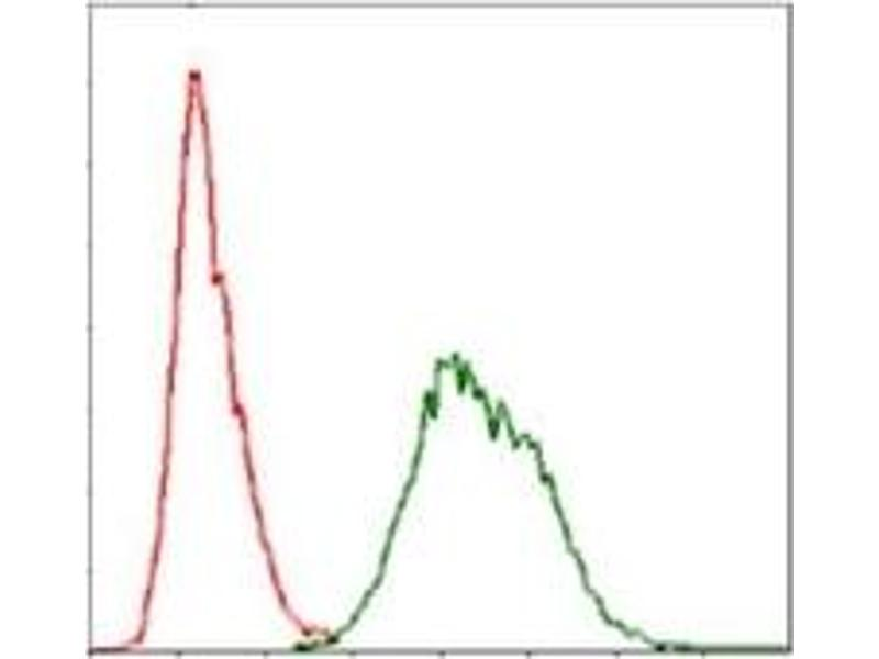 Flow Cytometry (FACS) image for anti-Ubiquitin antibody (ABIN1109441)
