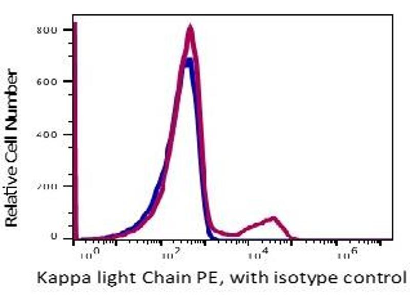 Anti Kappa Light Chain Antibody