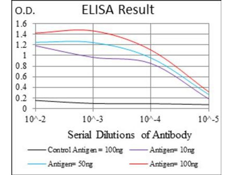 ELISA image for anti-Forkhead Box O1 (FOXO1) antibody (ABIN1845870)