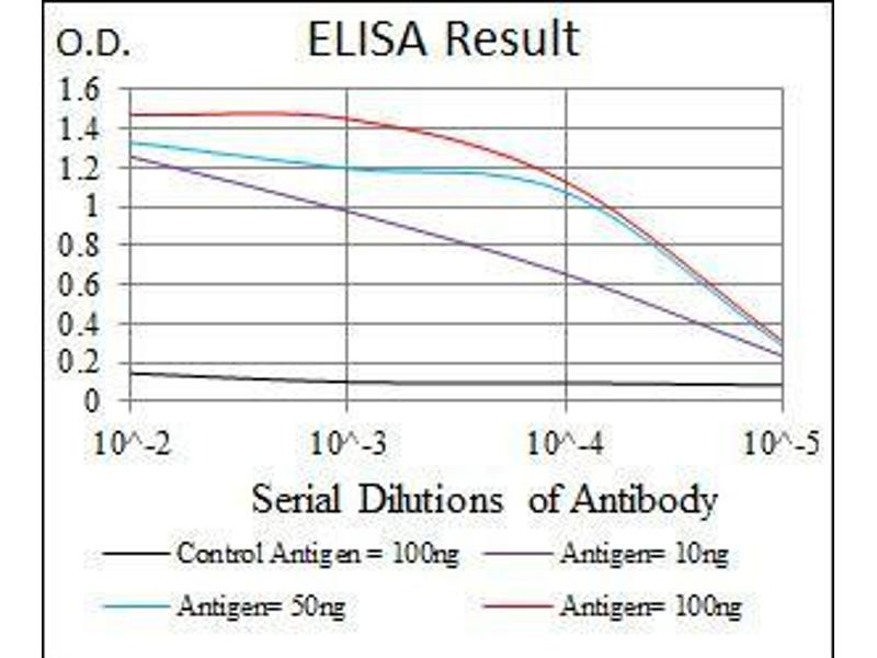 ELISA image for anti-Low Density Lipoprotein Receptor-Related Protein 5 (LRP5) antibody (ABIN969535)
