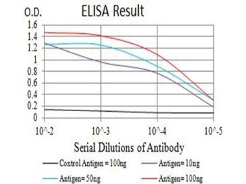 Image no. 1 for anti-Colony Stimulating Factor 3 Receptor (Granulocyte) (CSF3R) (AA 25-187) antibody (ABIN5680976)