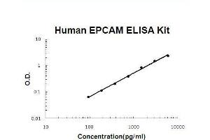 Image no. 1 for Epithelial Cell Adhesion Molecule (EPCAM) ELISA Kit (ABIN2859292)