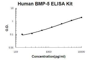 Image no. 1 for Bone Morphogenetic Protein 5 (BMP5) ELISA Kit (ABIN921053)