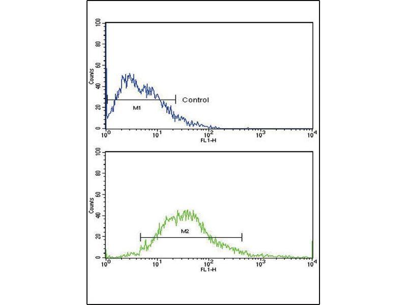 Flow Cytometry (FACS) image for anti-FGFR1 antibody (Fibroblast Growth Factor Receptor 1) (AA 19-48) (ABIN1882081)