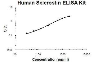 Image no. 1 for Sclerostin (SOST) ELISA Kit (ABIN5510605)