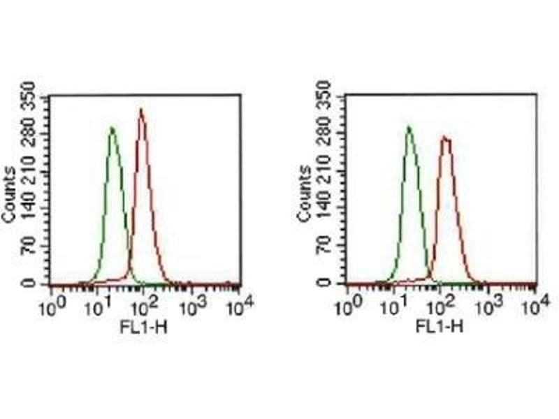 Flow Cytometry (FACS) image for anti-FGFR1 antibody (Fibroblast Growth Factor Receptor 1) (Isoform beta) (ABIN250616)