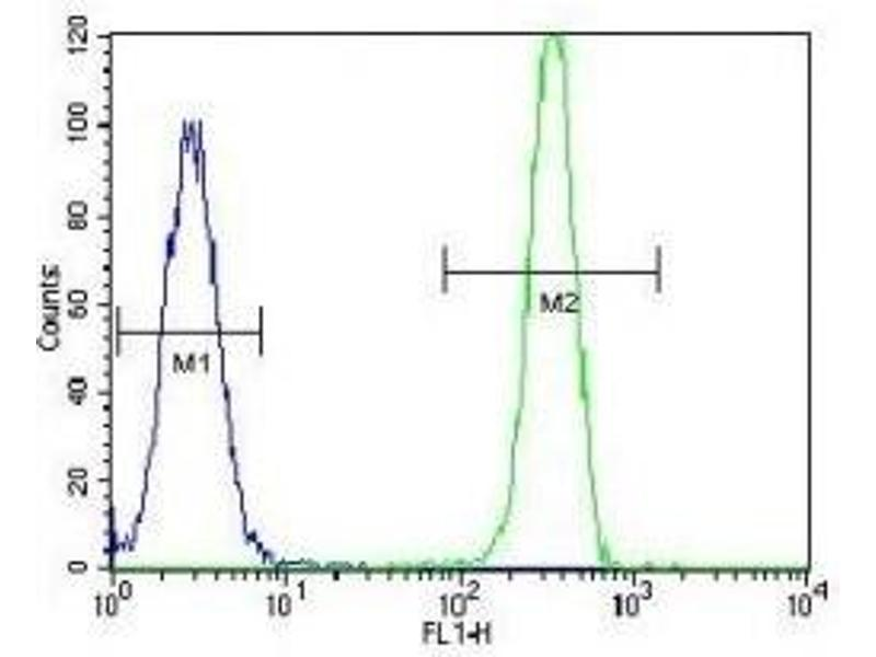 Flow Cytometry (FACS) image for anti-MSH2 (AA 637-665) antibody (ABIN3031883)