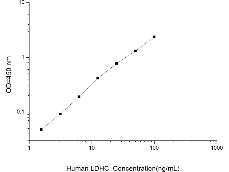 Lactate Dehydrogenase C (LDHC) ELISA Kit (2)