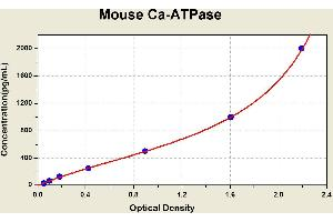 Image no. 1 for Calcium ATPase At 60A (CA-P60A) ELISA Kit (ABIN1113863)