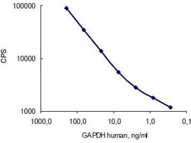 image for anti-Glyceraldehyde-3-Phosphate Dehydrogenase (GAPDH) antibody (ABIN284439)
