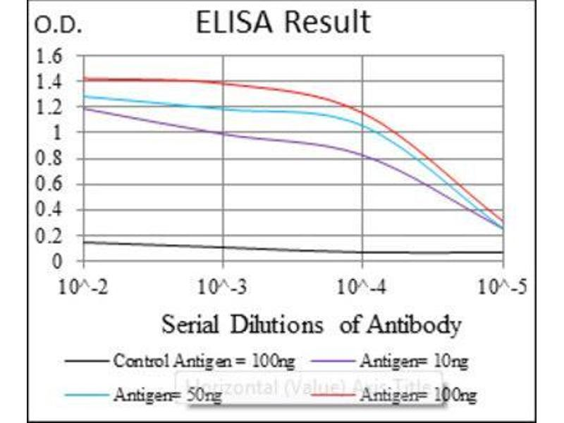 ELISA image for anti-Argininosuccinate Synthase 1 (ASS1) antibody (ABIN1845465)