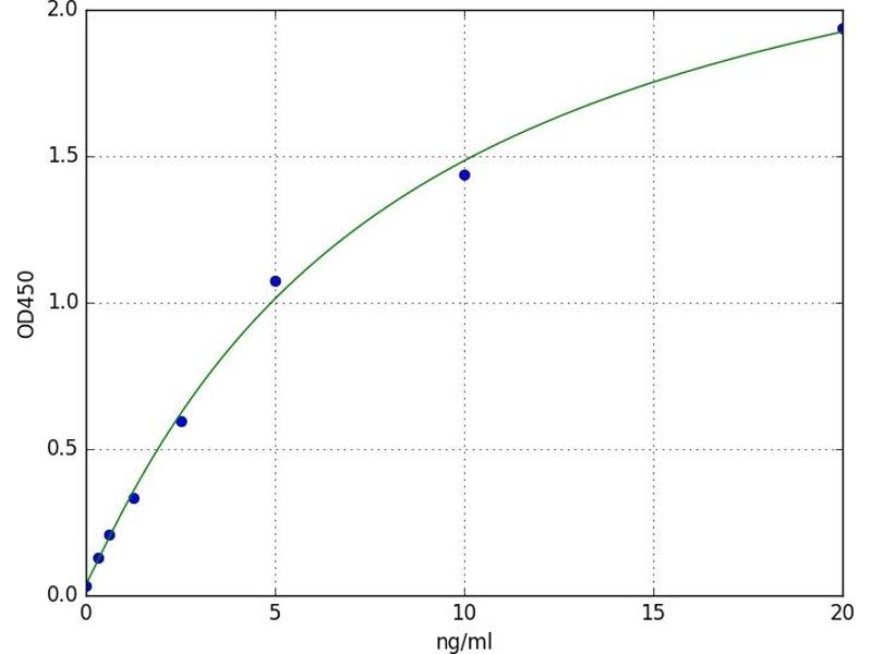 Cytochrome P450, Family 3, Subfamily A, Polypeptide 4 (CYP3A4) ELISA Kit