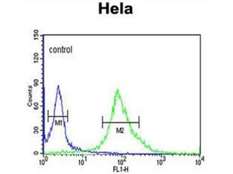 Flow Cytometry (FACS) image for anti-DEAD (Asp-Glu-Ala-Asp) Box Polypeptide 49 (DDX49) (AA 392-421), (C-Term) antibody (ABIN951867)