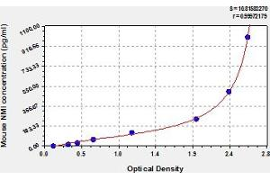 Image no. 1 for N-Myc (And STAT) Interactor (NMI) ELISA Kit (ABIN6974815)