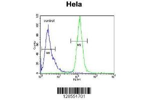 Flow Cytometry (FACS) image for anti-H2A Histone Family, Member Y2 (H2AFY2) (AA 11-39), (N-Term) antibody (ABIN654683)
