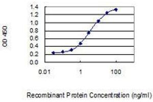Image no. 1 for anti-Complement Factor D (CFD) (AA 154-253) antibody (ABIN2565439)