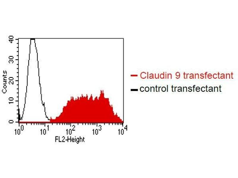 cld 621p的接线图