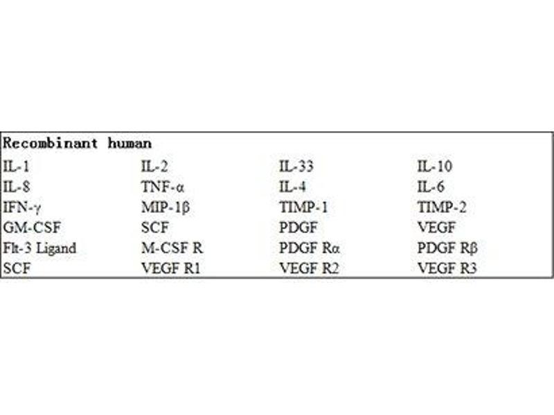Mast/stem Cell Growth Factor Receptor (KIT) ELISA Kit (2)