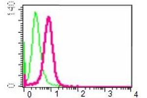 Flow Cytometry (FACS) image for anti-VAV3 antibody (Vav 3 Oncogene) (C-Term) (ABIN258535)