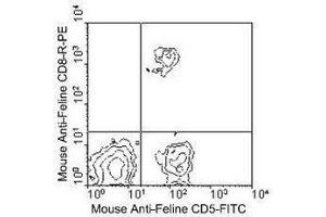 Flow Cytometry (FACS) image for anti-CD8a Molecule (CD8A) antibody (Biotin) (ABIN440216)