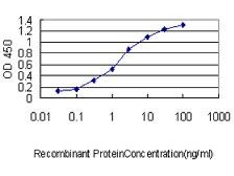 ELISA image for anti-BCL2-Like 1 (BCL2L1) (AA 1-233), (full length) antibody (ABIN560043)