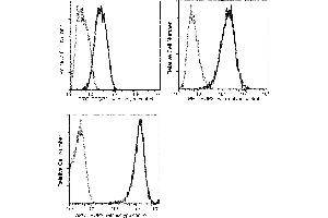 Image no. 3 for anti-Tumor-Associated Calcium Signal Transducer 2 (TACSTD2) (AA 1-274) antibody (FITC) (ABIN1996781)