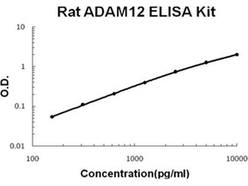 ADAM Metallopeptidase Domain 12 (ADAM12) ELISA Kit