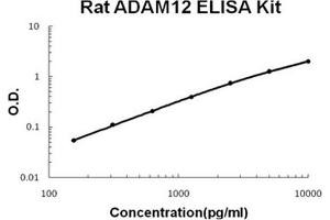 Image no. 1 for ADAM Metallopeptidase Domain 12 (ADAM12) ELISA Kit (ABIN1889433)