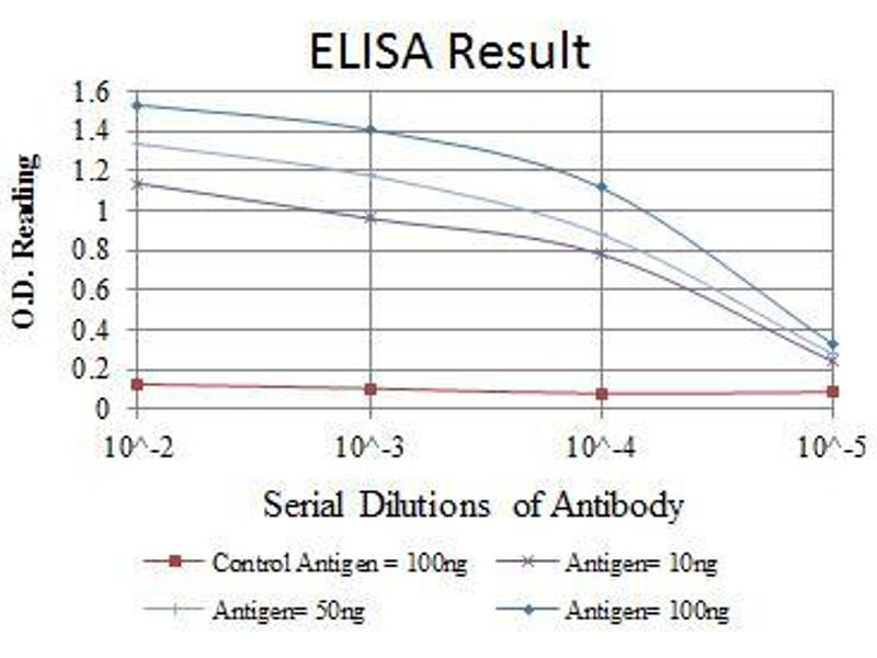 ELISA image for anti-FYN antibody (FYN Oncogene Related To SRC, FGR, YES) (ABIN969160)