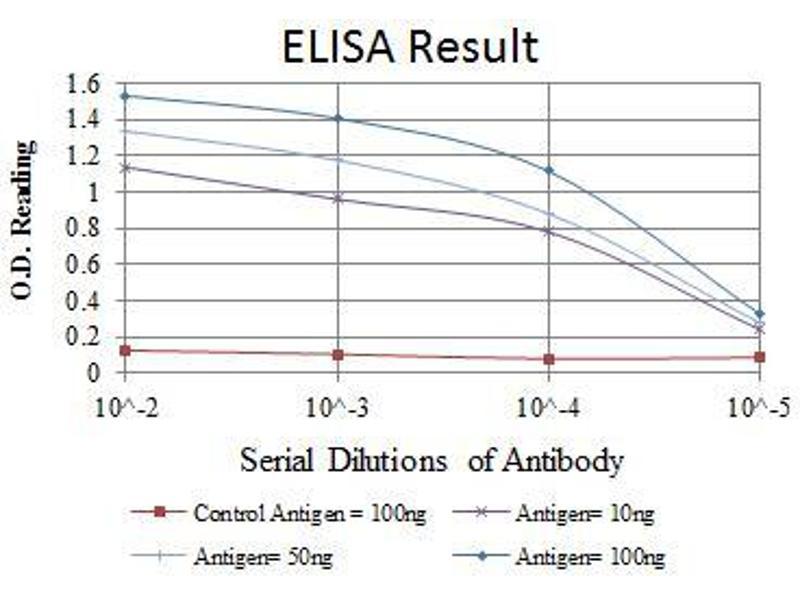 ELISA image for anti-FYN Oncogene Related To SRC, FGR, YES (FYN) antibody (ABIN969160)