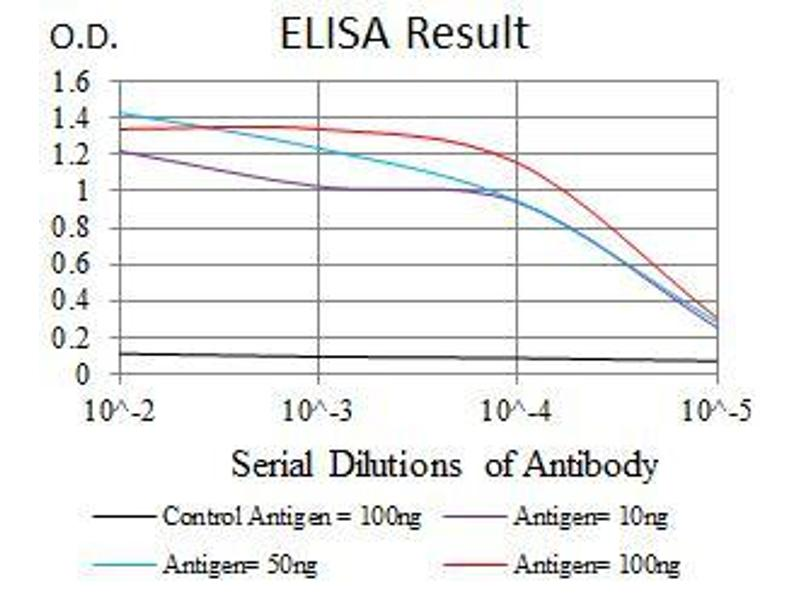 ELISA image for anti-YAP1 antibody (Yes-Associated Protein 1) (ABIN969574)