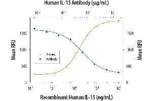 Neutralization (Neut) image for anti-IL15 antibody (Interleukin 15) (AA 49-162) (ABIN4900389)