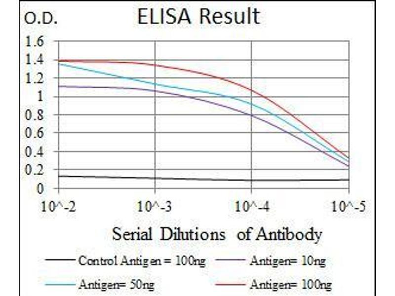 ELISA image for anti-T Antigen (AA 218-352) antibody (ABIN969569)