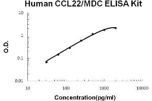 Image no. 1 for Chemokine (C-C Motif) Ligand 22 (CCL22) ELISA Kit (ABIN411323)
