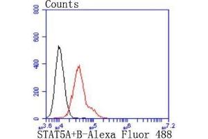 Flow Cytometry (FACS) image for anti-Signal Transducer and Activator of Transcription 5A (STAT5A) (C-Term) antibody (ABIN5947593)