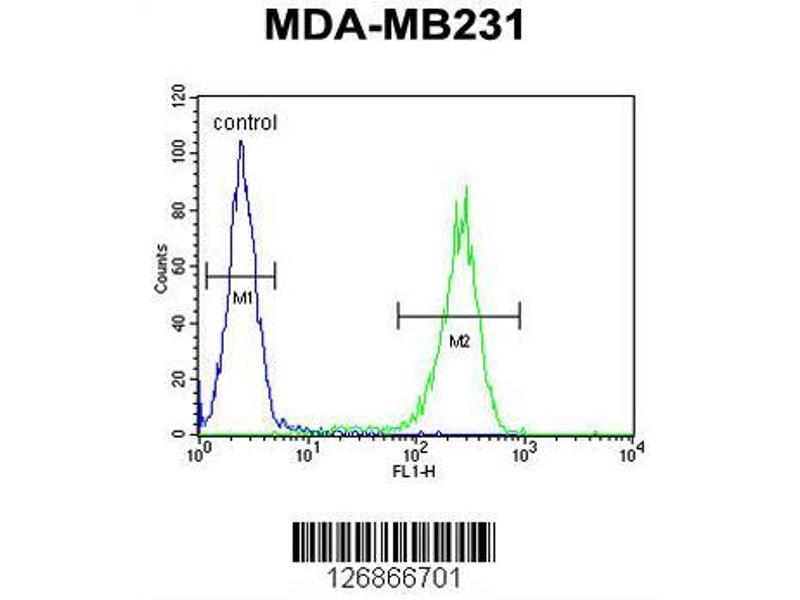 Flow Cytometry (FACS) image for anti-RAB11 Family Interacting Protein 2 (Class I) (RAB11FIP2) (AA 345-374), (Center) antibody (ABIN651666)